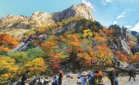 Colorful Mount Seorak