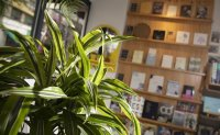 Plant-filled bookstore provides comfy community space for local people