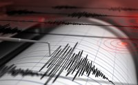 Chile regrets panic triggered by mistaken tsunami warning after quake