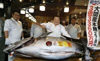 $3.1 million: Giant tuna auctioned off at record high price in Japan [PHOTOS]