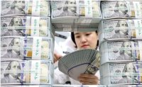 FX reserves hit record high