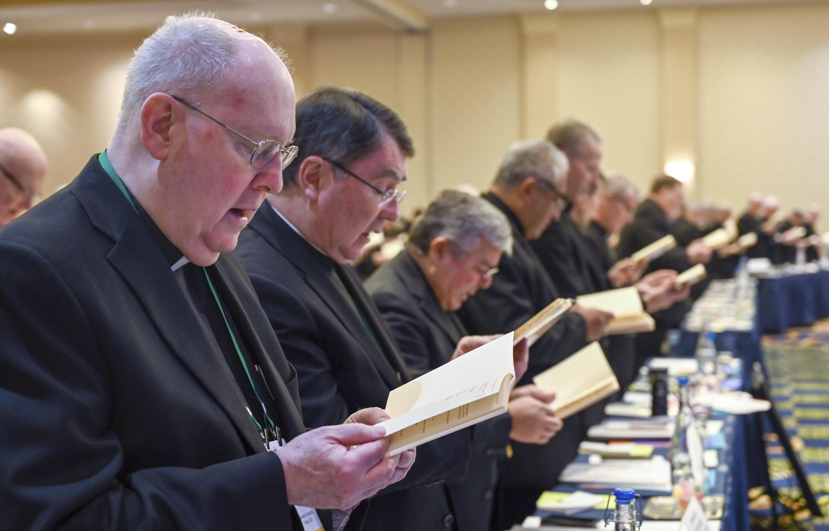 Catholic bishops' agenda: immigrants, gun deaths, sex abuse