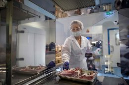 Europe's guardian of stem cells and hopes, real and unrealistic