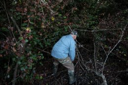 'It was going for my throat': Florida python hunters wrestle invasive snakes