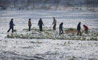 Defectors speak on freezing reality of North Korea's winter