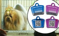 QR codes on dog collars bring pet owners to heel