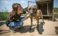 'I look forward to seeing end of dog farms'