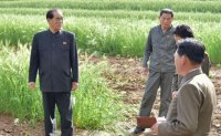 Red Cross to provide water pumps to Pyongyang as emergency aid