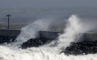 Typhoon-caused strong winds hit Korea