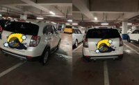 Public anger rises over car owners taking up multiple parking spaces