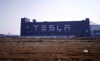 LG monitoring Tesla's plan to manufacture batteries