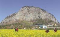 Jeju losing luster as tourist destination