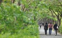 Walking tour catches on among Koreans