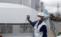 Japan court orders gov't and TEPCO to pay in Fukushima disaster