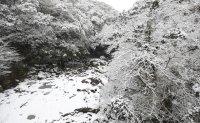 Cold snap grips Korea