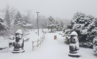 Unseasonal snowfall covers mountains in Gangwon Province