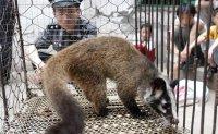 COVID-19 investigators turn focus onto Chinese wildlife farms