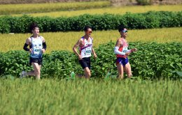 Restricted area along DMZ opens for peace marathon