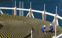 LS C&S sweeps submarine cable orders in Taiwan