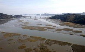 Korean tidal flats receive preliminary 'defer' status as UNESCO World Heritage