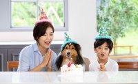 Korea's pet care market estimated at $1.57 billion