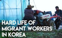 Migrant workers living in dire conditions in Korea
