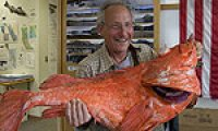 Henry Liebman Catches Giant Fish That May Be 200 Years Old