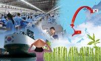 [Anniversary] Is Vietnam a goldmine for Korean companies?