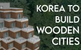 Why we should start building homes out of wood [VIDEO]