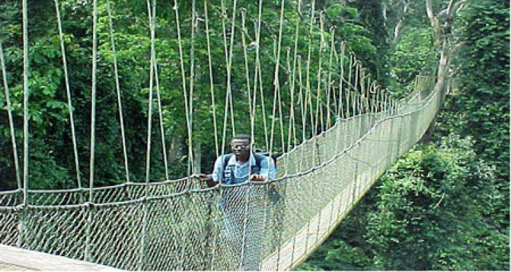 A visitor crosses the Canopy Walkway at the Kakum National Park.                                                                                  / Courtesy of Ghanaian Embassy