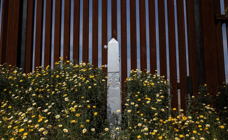 Wild flowers bloom in front of the US-Mexico border fence seen from Tijuana, in Baja California state, Mexico, on March 26, 2019. - A Democrat-led congressional committee challenged Tuesday the Pentagon's plan to divert $1 billion to support President Donald Trump's plan to build a wall on the US-Mexico border. AFP