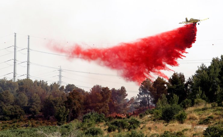 A firefighting aircraft flies over a forest near Kibbutz Harel, which was damaged by wildfires during a record heatwave, in Israel May 24, 2019. Reuters
