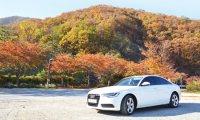 An autumn drive with Audi A6 2.0 TDI