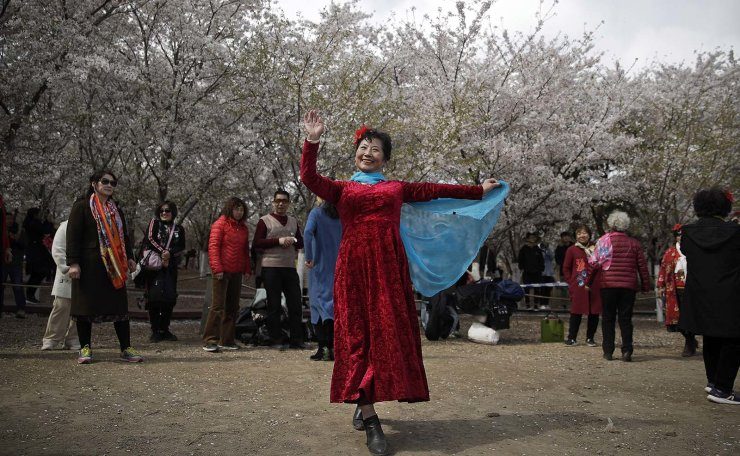 A Chinese woman performs a dance near cherry blossoms at the Yuyuantan Park during a spring festival in Beijing, Saturday, March 30, 2019. People crowded the park, which has more than 2,000 cherry trees, for the popular annual cherry blossoms festival. AP