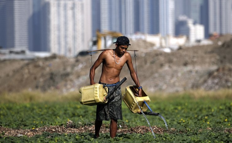 A Filipino waters plants in a field within view of of Makati's financial district skyline in Taguig City, Philippines, 14 March 2019. According to reports, low water supply brought by the onset of El Nino weather phenomenon is affecting farmers' crops. EPA