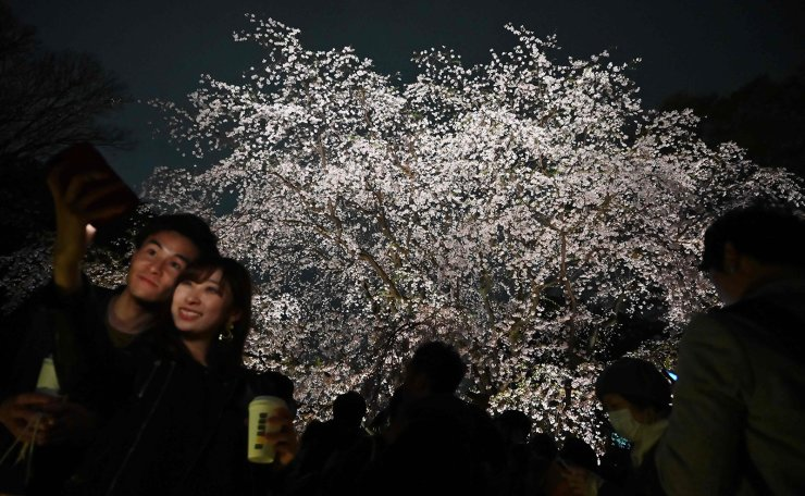Visitors pose for a picture as they enjoy cherry blossoms in the Japanese capital of Tokyo on March 28, 2019. AFP