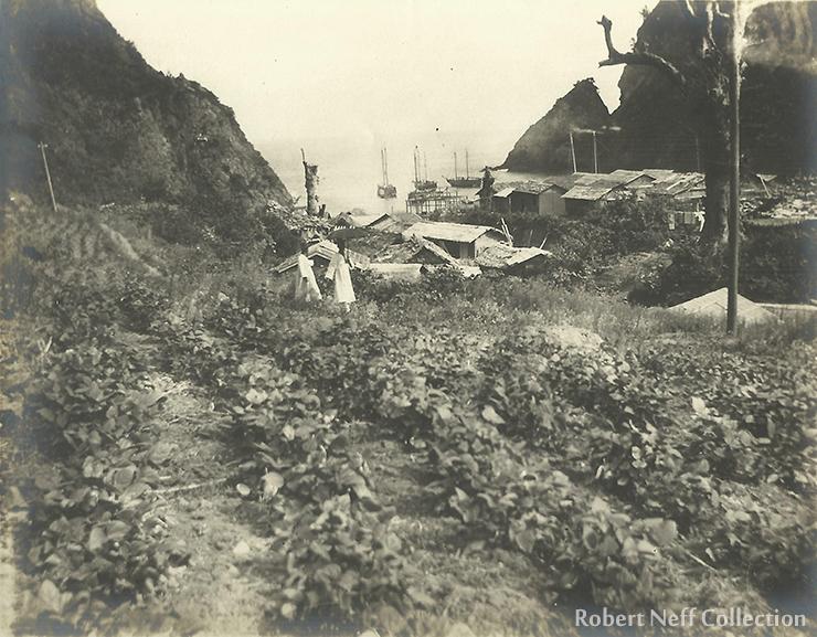 Korean junks on Ulleong Island circa 1906.