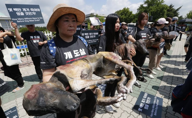 Members of the Last Chance for Animals hold models of slaughtered dogs during a rally to oppose eating dog meat in front of the National Assembly in Seoul, South Korea, Friday, July 12, 2019. July 12 is the day South Koreans eat healthy foods such as dog meat in the belief it would help them survive heat during summer. AP