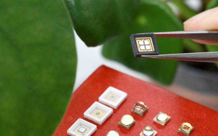 LG Innotek's horticultural LED / Courtesy of LG Innotek