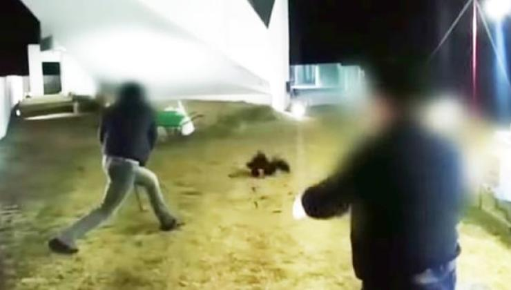 A WeDisk employee strikes out with a Japanese blade at a chicken that was flung into the air by another employee during the company's workshop at a mansion in Hongcheon County in Gangwon Province in 2016. Captured from News Tapa