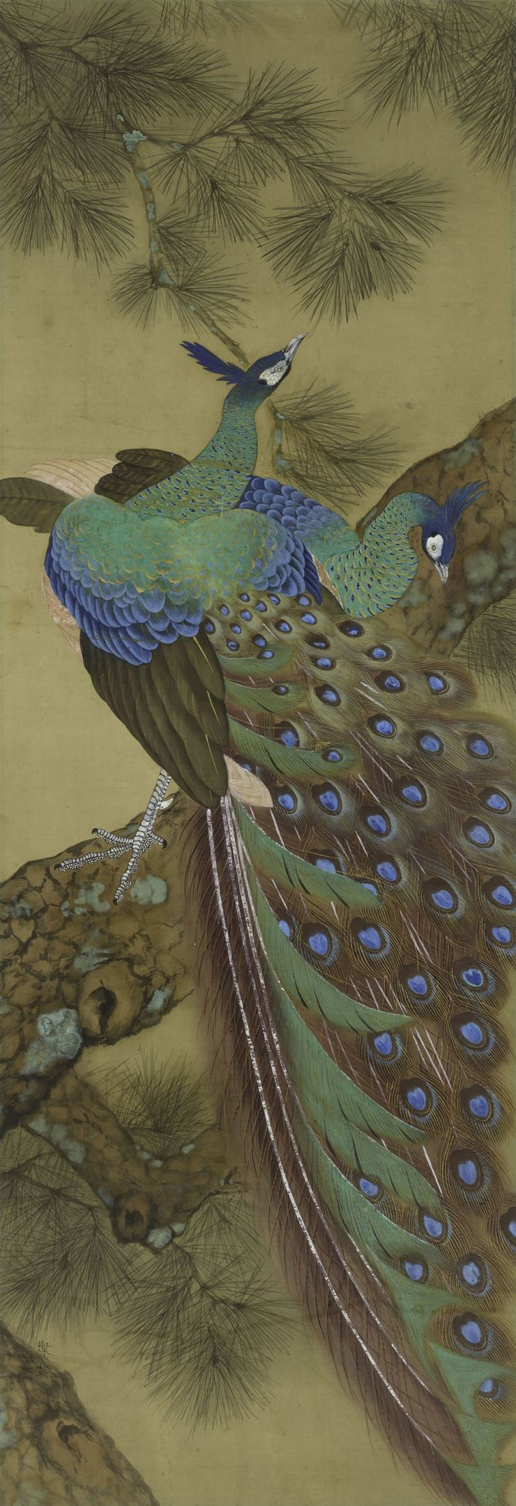 Jung Chan-young's 'Peacock' (1935) / Courtesy of MMCA