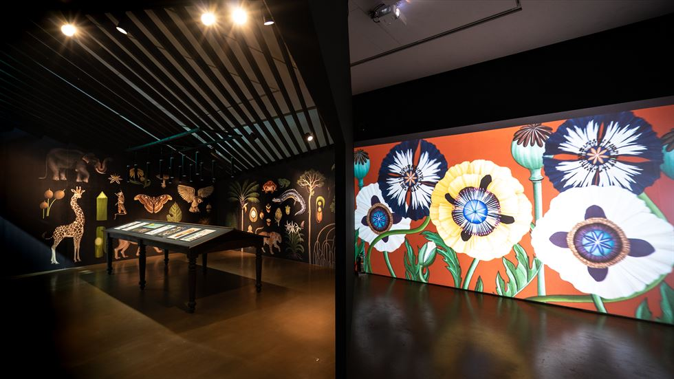 Jaime Hayon's exhibition will be at Daelim Museum until Nov. 17./Courtesy of Groninger Museum