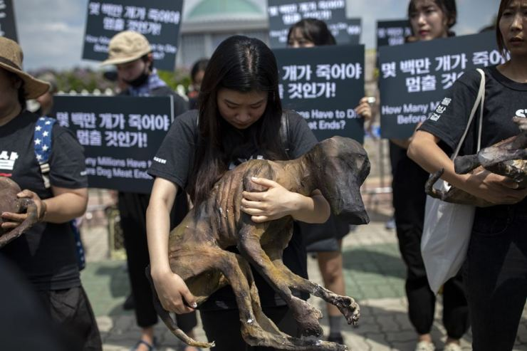 An animal rights activist holds on to a life-size model of a slaughtered dog. / Korea Times photo by Shim Hyun-chul