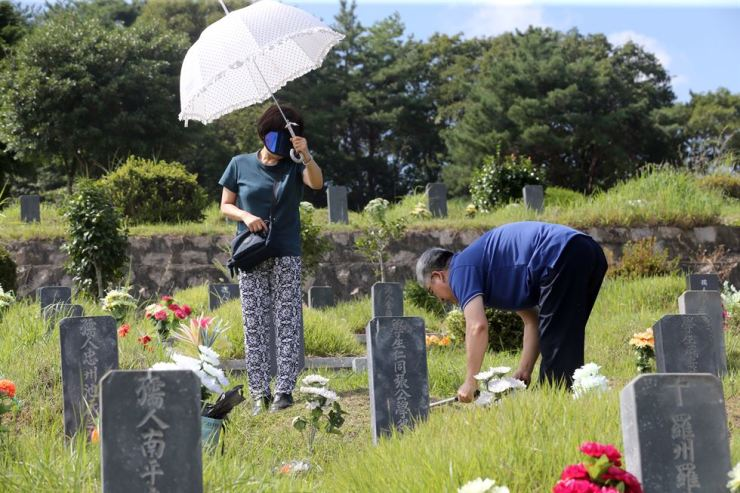 People cut weeds around the grave sites of their ancestors at Youngrak Park in Busan, Aug. 25, before Chuseok, when they hold ancestral rites. Yonhap