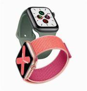 Apple Watch Series 5 / Courtesy of Apple Korea