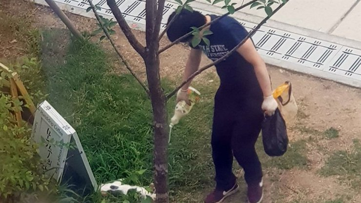 In footage captured on July 13, the accused pours an unidentified liquid onto the body of the cat he killed for no reason.