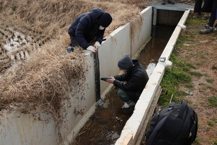 Rose drills a frog ladder into the concrete wall of a ditch in Baengnyeongdo Island's Jinchon village. Courtesy of Incheon KFEM