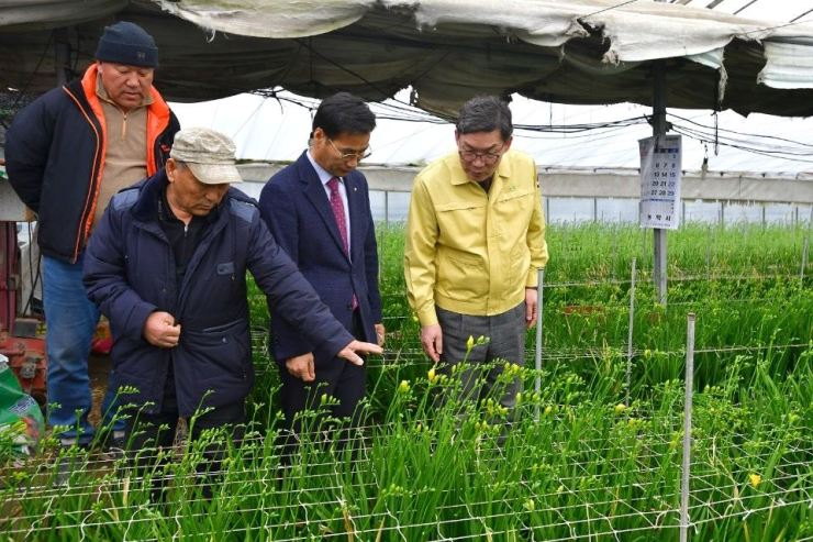 NongHyup Bank CEO Lee Dae-hoon, right, listens to floriculturists at a farm in Gongju, South Chungcheong Province, Thursday. The bank said it bought freesias worth 11 million won ($9,300) to help floriculturists suffering from the spread of 2019-nCoV (COVID-19). / Courtesy of NongHyup Bank