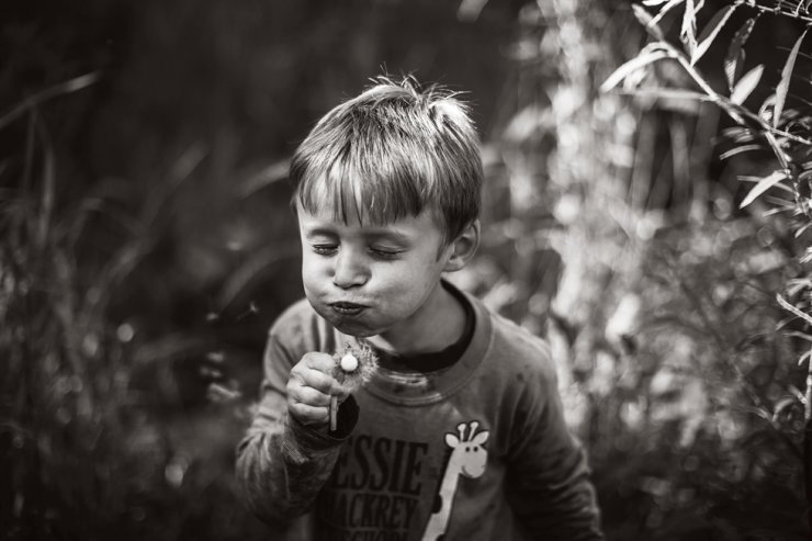 Romanian-American artist Mari Calai's son Samuel blows the seeds off a red-seeded dandelion in the woods located in Falls Church, Virginia, in this September 2016 file photo. Calai released a photobook titled 'ADAGIO' featuring her son and daughter growing up with nature, last week, five years after the photos were taken. / Photo from Noonbit Publishing