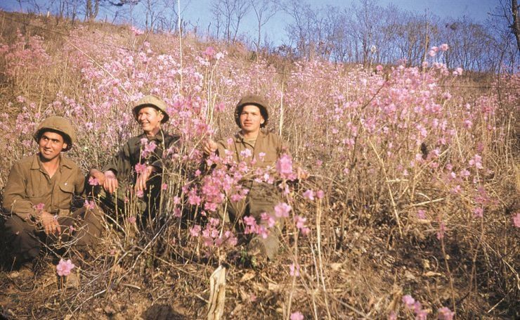 Three Colombian soldiers in Korea sit among the flowers in spring 1953. / Courtesy of Embassy of Colombia